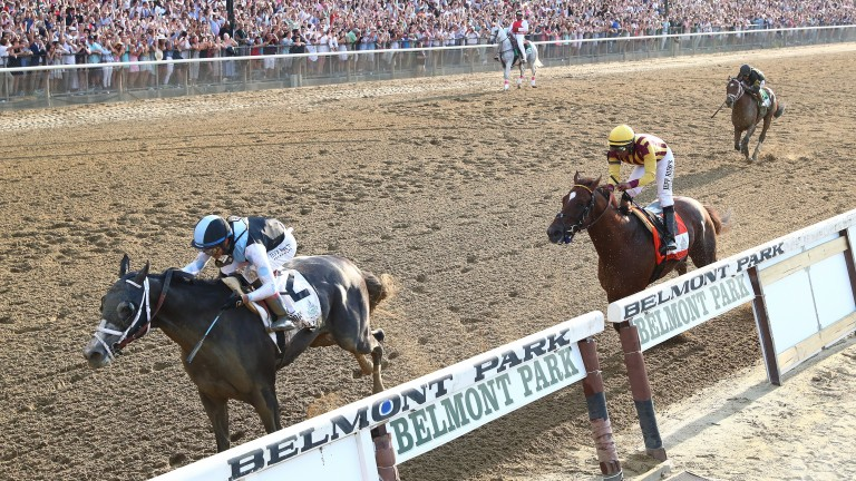 Tapwrit draws clear of Irish War Cry in the final stages of the Belmont Stakes