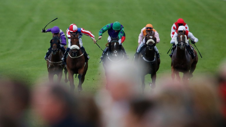 Pettochside (second from left, red and white sleeves) wins for David Henery at Goodwood, his favourite course, in 2015