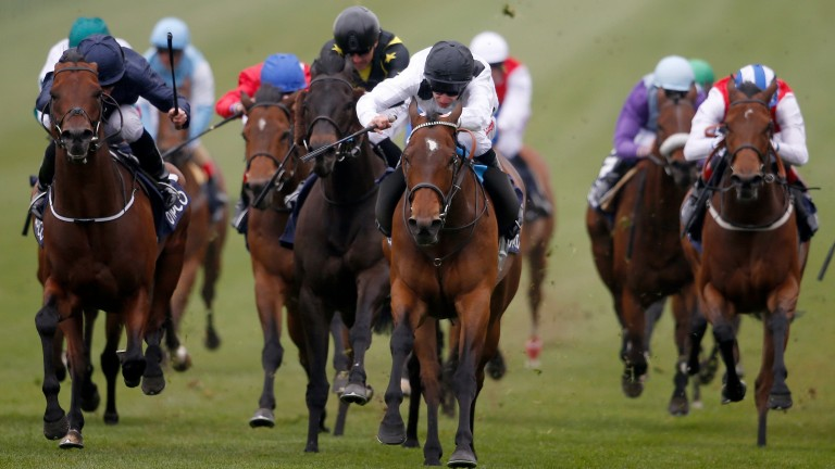 Marsha (white, black cap) lands the Palace House Stakes at Newmarket