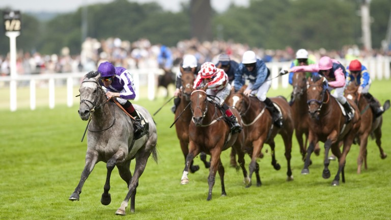 Laddies Poker Two (Johnny Murtagh) lands a huge gamble in style in the Wokingham Stakes