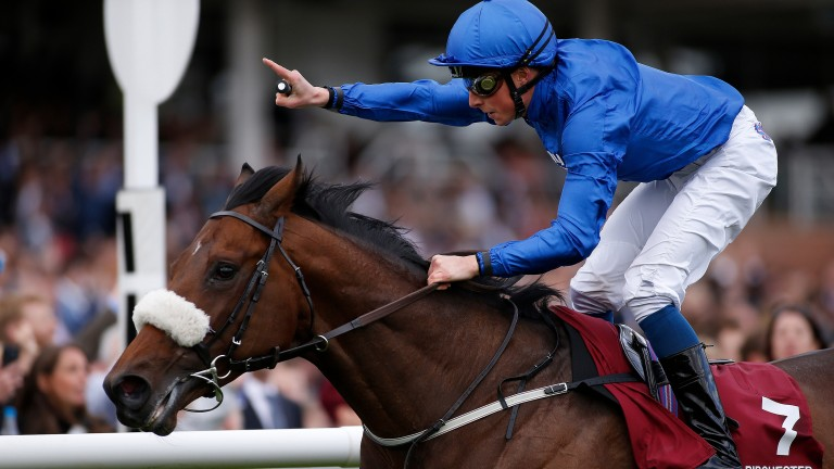Ribchester: top miler was popular with breeders