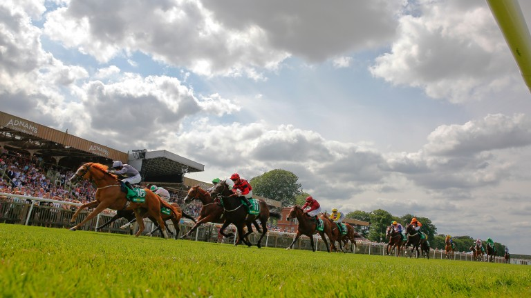 The Bunbury Cup would get the season on Newmarket's July course off to a spectacular start