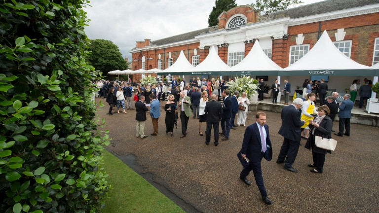 Guests mingle at the drinks reception ahead of the Goffs London Sale at The Orangery at Kensington Palace