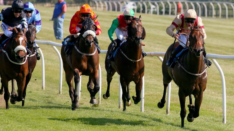 Silvanus (right): seen in winning action at Catterick