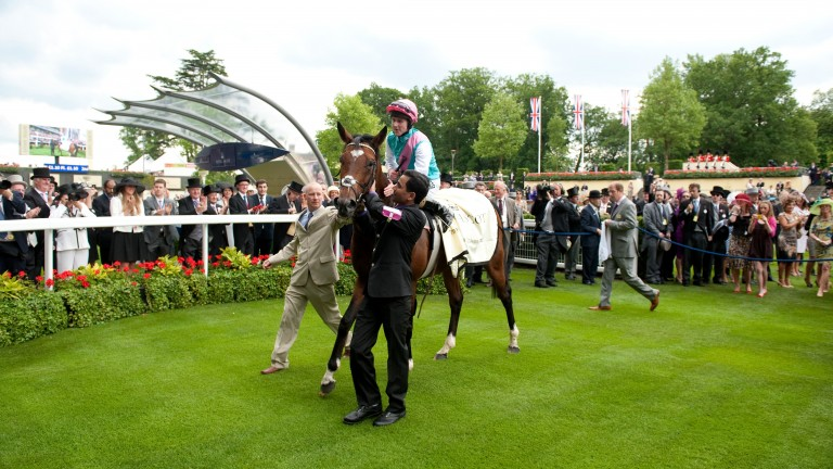 Frankel - twice a Royal Ascot winner
