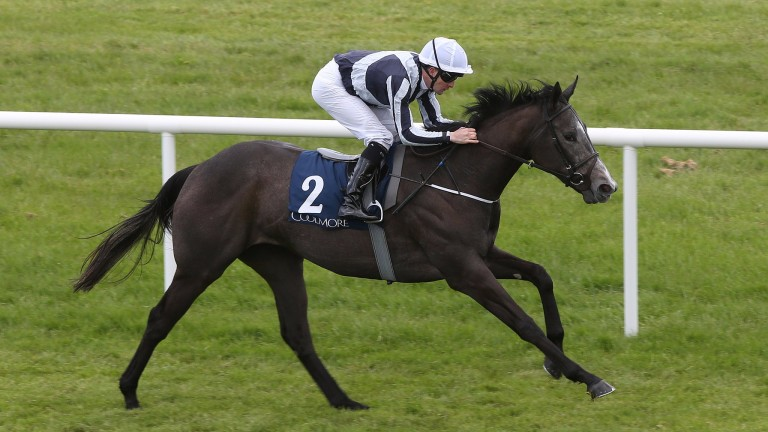 Alpha Centauri: second at Royal Ascot but should come into her own when stepped up in trip