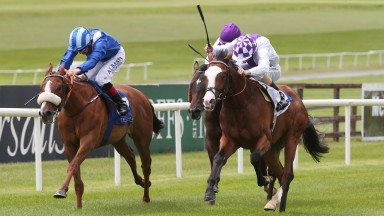 Moghamarah (left) finishes a promising second to Strike For Freedom at the Curragh