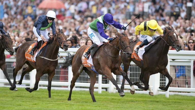 Margot Did (purple cap) supplied her first winner as a broodmare on Friday