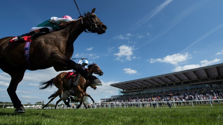 Time it right: James Doyle drives Time Chaser home in the fillies' handicap