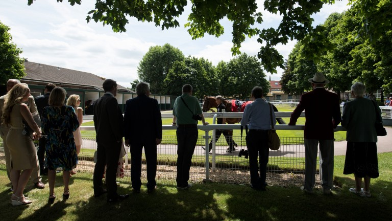 Gathering in the shade: racegoers assemble to look at the runners in the pre-parade