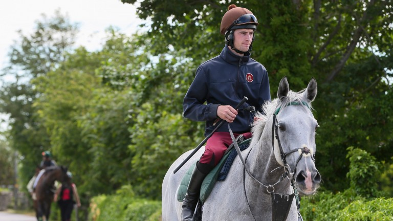 Brian Toomey aboard Kings Grey, on whom he had his comeback ride in July 2015