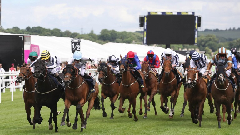 LINE OF REASON and Joe Fanning (yellow/black hoop cap) win at Musselburgh 17/6/17Photograph by Grossick Racing Photography 0771 046 1723