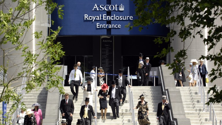 Royal Ascot: scene of intrigue for industry members and pedigree enthusiasts alike