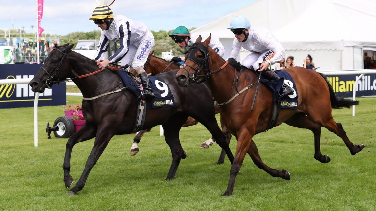 Line Of Reason wins the Scottish Sprint Cup