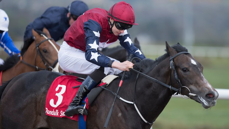"""True Blue Moon: """"likely to run in the Norfolk Stakes"""" according to Joseph O'Brien"""