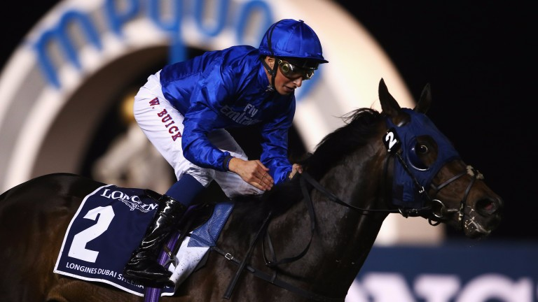 Jack Hobbs: His Dubawi half-sister will be offered by Minister Stud