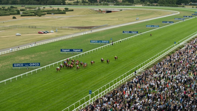 Ascot: ready for action after watering finished on Monday