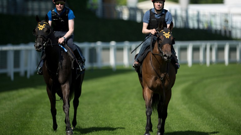 Nootka Sound (Pat Cosgrave, left) and Elizabeth Darcy (Jamie Spencer) getting to know Ascot last Monday