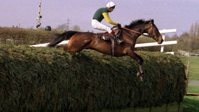Dublin Flyer and Brendan Powell clear one of the Grand National fences in the 1995 John Hughes Memorial Chase