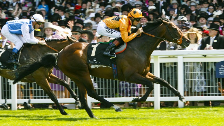 Canford Cliffs: wins from Goldikova in the 2011 Queen Anne Stakes - his third Royal Ascot success