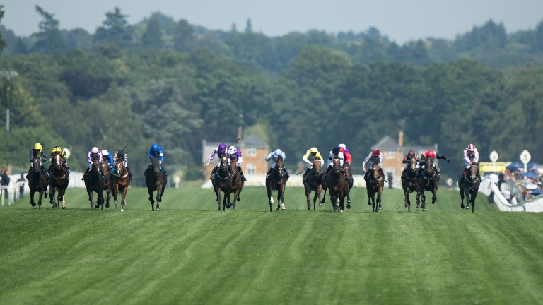 Rajasinghe (five from the left) on his way to victory in the Coventry under Stevie Donohoe
