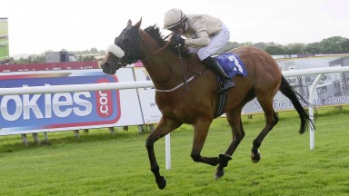 SAVE THE BEES Ridden by Ger O'Neill wins at Carlsile 2/7/16Photograph by John Grossick 0771 046 1723