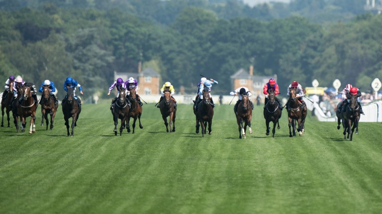 Headway (fourth right, mainly white colours) runs a huge race to take second in the Coventry