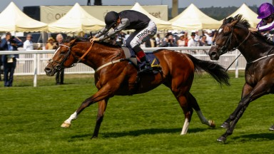 Rajasinghe provided his sire, Choisir, with yet another Royal Ascot winner with success in Tuesday's Coventry Stakes