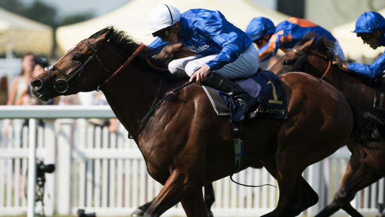 Barney Roy: by Frankel's old adversary Excelebration