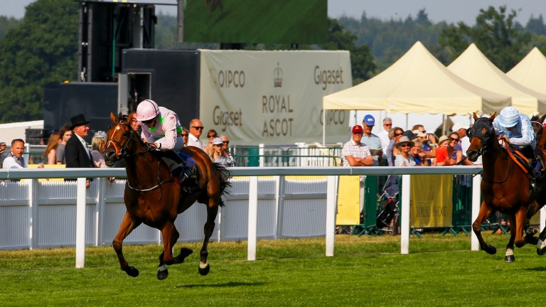 League of his own: Thomas Hobson runs out an easy winner of the Ascot Stakes under Ryan Moore