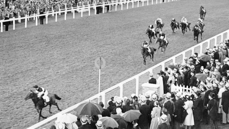 Abernant wins the Chesham at Royal Ascot in 1948; his daughter Caerphilly, mated with another Murless star in Crepello, produced a Classic winner who is fourth dam of Rajasinghe