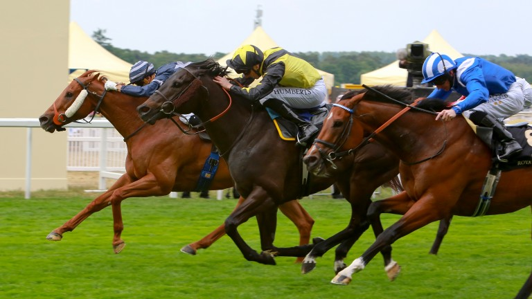 Goldream (yellow) claimed the King's Stand at Royal Ascot in 2015