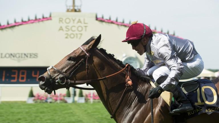 Qemah (Gregory Benoist) wins the Duke Of Cambridge Stakes