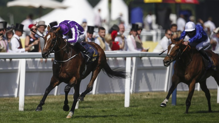 Highland Reel powers to victory in the Prince of Wales's