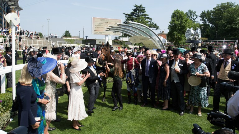Jubilant scenes: the owners of Heartache celebrate their victory in the Queen Mary Stakes