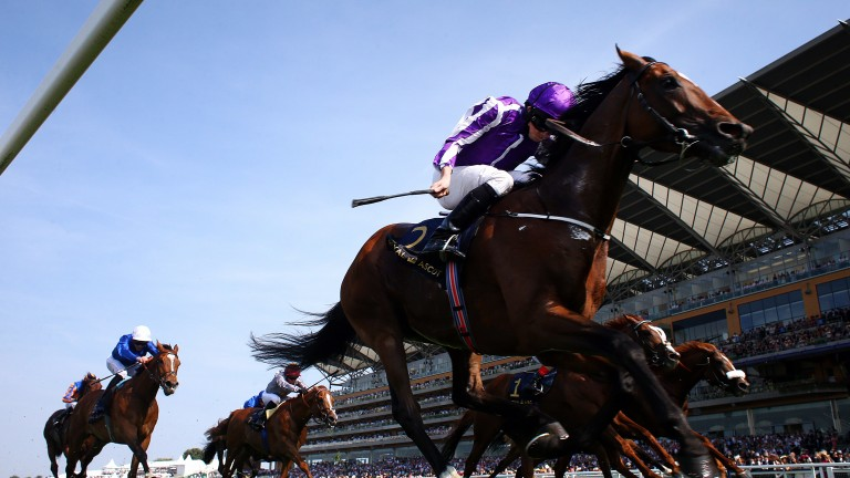 ASCOT, ENGLAND - JUNE 21: Ryan Moore rides Highland Reel (purple) to win The Prince of Wales's Stakes during day 2 of Royal Ascot at Ascot Racecourse on June 21, 2017 in Ascot, England. (Photo by Charlie Crowhurst/Getty Images for Ascot Racecourse)