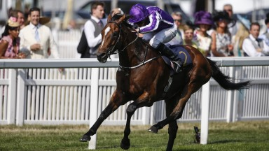 Highland Reel: has now won nearly £6million in prize money