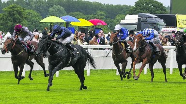Caravaggio and Ryan Moore impress in the Coventry Stakes 12 months ago