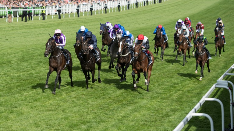 The Epsom Derby finish. Will it be the same order for the five who finished towards the back as they line up for Friday's King Edward VII Stakes at Royal Ascot?