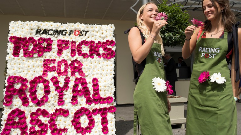 The specially commissioned Racing Post flower wall