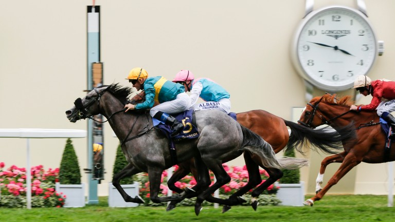 Timing it right: Olivier Peslier and Coronet swoop late to deliver the knockout blow to backers of favourite Mori in the Ribblesdale Stakes