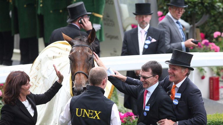 Even Aidan O'Brien - who trained the horse's sire, Duke Of Marmalade - cannot hide his admiration for Big Orange despite saddling the narrow runner-up on Wednesday