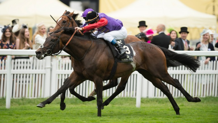 Dartmouth winning last year's Hardwicke Stakes