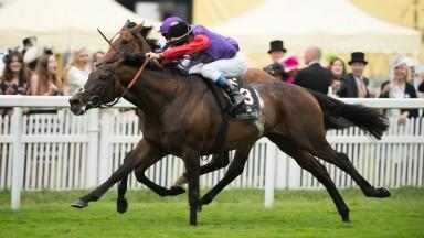 Dartmouth winning last year's Hardwicke Stakes