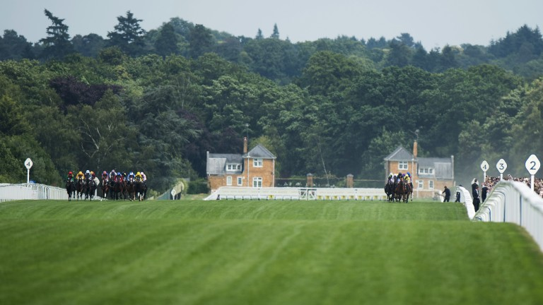 Difference of opinion: views are split among the jockeys as to the best ground  in the opening Albany Stakes