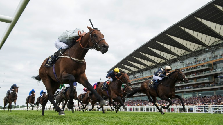 Sniffing that winning post: the tenacious Permian reaches for the line as he holds off the fast-finishing Khalidi (right) in the King Edward VII Stakes