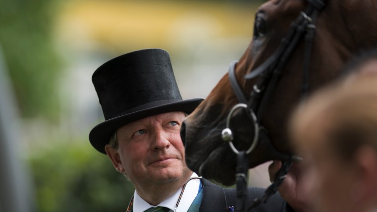 Well done boy: Mark Johnston glances admiringly at his King Edward winner Permian