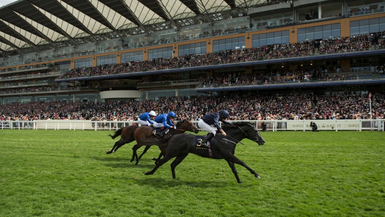 King of the Commonwealth: Ballydoyle standard bearer Caravaggio (Ryan Moore) gives Godolphin the blues as he runs down Harry Angel and Blue Point to win a thrilling Commonwealth Cup