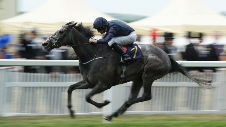 Out on her own: Winter warms the hearts of favourite backers in the Coronation Stakes to give team Ballydoyle a Group 1 double on day four