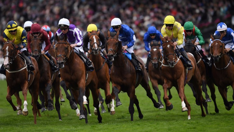 ASCOT, ENGLAND - JUNE 23:  Runners and riders round the bend during the Queen's Vase on Day Four of Royal Ascot at Ascot Racecourse on June 23, 2017 in Ascot, England.  (Photo by Mike Hewitt/Getty Images)